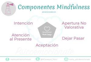 Componentes Mindfulness Psicoemocionate